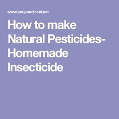 How to make Natural Pesticides- Homemade Insecticide