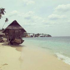 Cebu, Philippines @}-,-;--