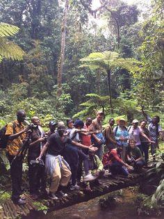 """8 hours, 17 km, 3 waterfalls and 16 new friends #Edirisatreks """"How to hike Bwindi"""" http://muzungubloguganda.com/2015/09/bwindi-hiking-gorilla-trekking-uganda/"""