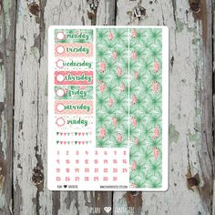 Bottom Washi & Date Stickers - Flamingo Kiss Summer Planner Sticker Kit - for use with Erin Condren Lifeplanner or Happy Planner TN bujo by planfantastic