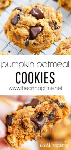 Pumpkin oatmeal chocolate chip cookies are the perfect fall treat. They're simple yet made with real pumpkin, oats, coconut oil, and chocolate chips. They're the perfect easy snack or dessert! Oat Chocolate Chip Cookies, Pumpkin Oatmeal Cookies, Pumpkin Chocolate Chips, Delicious Cookie Recipes, Yummy Cookies, Brownie Recipes, Easy Snacks, Pumpkin Recipes, Autumn