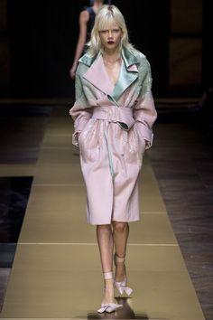 Atelier Versace Fall 2016 Couture Fashion Show - Marjan Jonkman