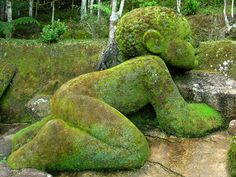 Moss covered. No details on where this is taken and most probably I would need a smaller version for my garden.