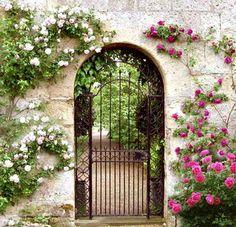 Rosas cor-de-rosa e brancas escalam o muro e deixam visível o portão de ferro.
