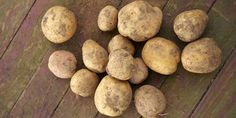 potatoes   Rodale's Organic Life