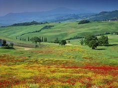 oh, Tuscany...