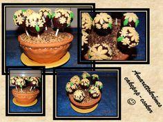 Cakepop Blumentopf