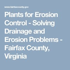Plants for Erosion Control - Solving Drainage and Erosion Problems - Fairfax County, Virginia