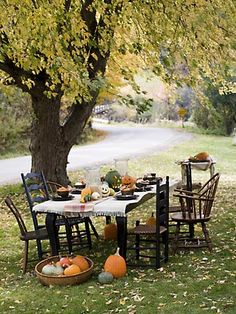 perfect outdoor setting for some lunch after apple picking in the fall. thanks to karin lidbeck-brent for the inspiration.