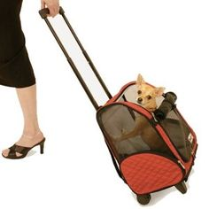 The Snoozer Roll Around Dog Carrier is an approved airline dog carrier* that makes traveling with your pet easy with this 4 in 1 design. Perfect for traveling, the Snoozer Roll Around Dog Carrier conv Pet Travel Carrier, Airline Pet Carrier, Cat Carrier, Airline Approved Pet Carrier, Designer Dog Carriers, Cat Cages, Cesar Millan, Backpacker, Dog Supplies