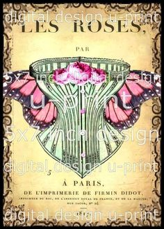 Vintage Corset - French Postcard - Butterfly Wings - digital collage sheet - download - by landofenchantment.etsy.com