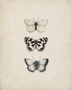 White butterflies tree mariposa tatuaje, mariposa antigua y Vintage Butterfly Tattoo, Simple Butterfly Tattoo, Butterfly Tree, Butterfly Tattoo Designs, Butterfly Wall Decor, Butterflies, Tattoo Vintage, Butterfly Sketch, Tattoo Simple