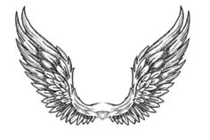крылья ангела карандашом - Поиск в Google