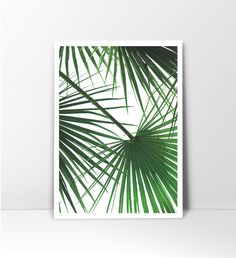 Get this item printed in 8x10 and mailed to you:  https://www.etsy.com/listing/473685573 _______________________________________________________________   This is an instant downloadable print, featuring green palm tree leaf print.   HOW TO PRINT:  There are some great local and online print studios that can produce really striking and cost effective wall art at really affordable prices. The online service providers include Shutterfly, Snapfish, Photobox, 48HourPrint.com, ...
