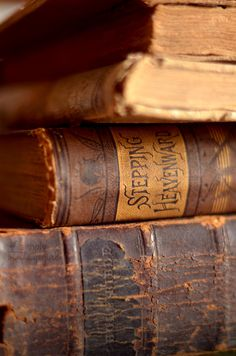 Old books. Beautiful binding. Vintage textures. (Cooking, Stepping Heavenward, God's Word...)