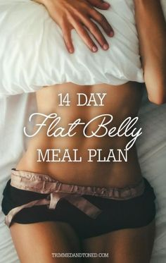 Full 14 Day Flat Belly Healthy Eating Meal Plan