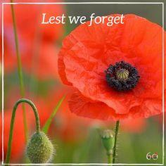 Remembrance Day – Lest We Forget via @https://au.pinterest.com/loncaric2047/