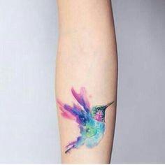 Colibri de colores