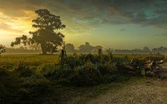 landscape background desktop free (Corliss Sinclair 1920x1200)