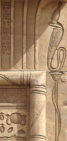 """House of Birth"" of the Sanctuary of the Goddess Hathor at Nitentóre (Dendera), detail from one of the columns of the exterior wall (south outer face): the Goddess Nekhbet in Her form of sacred Uraeus (wearing the White Crown) standing up on a papyrus flower and with the tail twisted around the stem."