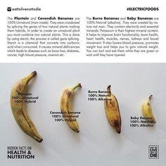 Burro Banana & Baby Bananas are 100% alkaline & natural , not hybrid #alkalinevegan