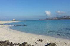 Bilocale Strelizia Stintino  #GreenWhereabouts #bilocale #bilocalestreliziastintino #strelizia #stintino #sardegna #mare #sole #spiaggia #estate #summertime
