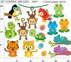 Rainforest Animals  Set de Clip Art y Papeles Digitales