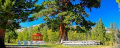 Paradise Park is located at the base of Echo Summit in South Lake Tahoe.  There is a small lake, grassy lawns, a river and great views of the Sierras!