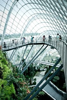 Gardens by the Bay/ Singapore