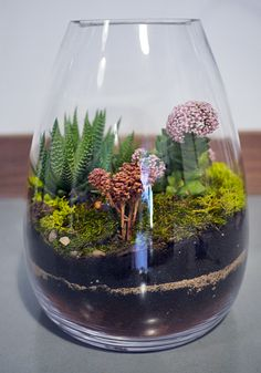 another terrarium from sprout home in Chi-town!