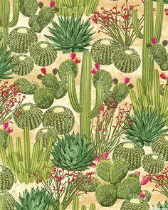 Southwest - Cactus Garden - Warm Sand
