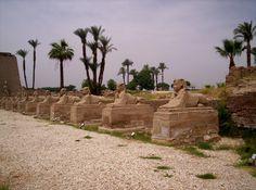 Egypte; Luxor '05