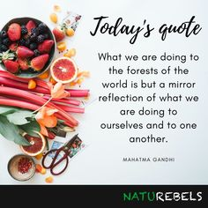 Motivating and inspiring quotes handpicked for you! Today Quotes, Inspiring Quotes, Sustainability, Healthy Lifestyle, Eco Friendly, Organic, Green, Crafts, Food