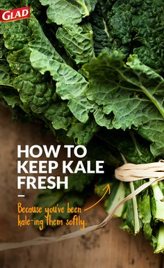 Here's how you store Kale. Use these tips to keep your kale fresher, longer.  Do not rinse or stem the kale before storing. Wrap kale leaves in a dry paper towel, and place into a Glad Zipper 2-in-1 Gallon bag. Squeeze out as much air as possible when closing the bag. Store the bag of kale in the coldest part of the refrigerator. To store cut kale, place into a GladWare food protection container, sized to fit.