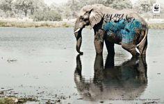 """""""O que se deve fazer antes de respeitarmos o planeta?"""" - WWF  Para o descarte adequado de seus resíduos, conte com nossa busca por postos em: www.ecycle.com.br/postos/reciclagem.php  www.eCycle.com.br Sua pegada mais leve."""