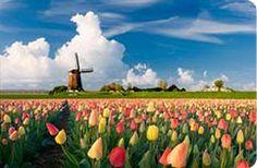 Caravan Holiday Parks in Holland | Hoseasons