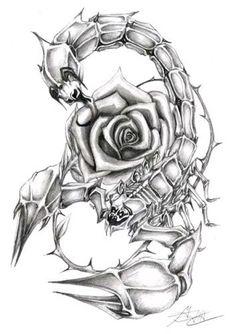 Image from http://www.tattooshunt.com/images/29/rose-flower-and-scorpio-tattoo-design.jpg.
