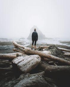 Pacific Northwest. Moody foggy coastline