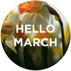 Hello March, Hello goal weight!