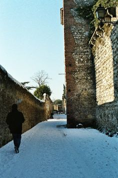 Mura scaligere - Medieval towers and wall - urban trekking from Bishop gate to Scarp Battery - Verona