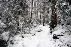 Smile estudio fotografos nieve Snow, Creative Photography, Author, Studio, Eyes, Let It Snow