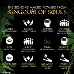 'Kingdom of Souls' is perfect for fans of 'Children of Blood and Bone' and 'Strange The Dreamer.' Start reading this epic fantasy today! Sagittarius And Capricorn, Gemini And Cancer, Blood And Bone, Young Adult Fiction, Ali Quotes, Book Recommendations, Zodiac Signs, Astrology, The Book