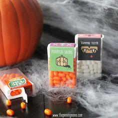Download and print these adorable Pumpkin Seeds free printable Tic-Tac labels for a unique and fun Halloween treat for kids to give to friends!  With Halloween right around the corner we are in fu…