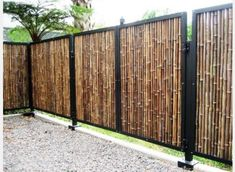 Backyard Privacy, Privacy Fences, Backyard Fences, Garden Fencing, Backyard Landscaping, Landscaping Ideas, Diy Pool Fence, Hot Tub Privacy, Inexpensive Landscaping