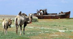 20 Photos Of The Shipwrecks Of The Aral Sea