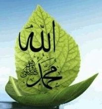 Muhammad, Allah, Image, Beautiful, God