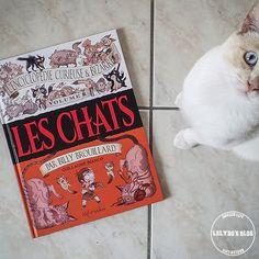 L'Encyclopédie Curieuse Et Bizarre de Billy Brouillard vous présente : Les Chats!