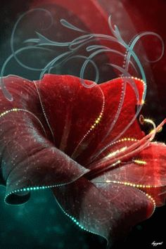 Decent Image Scraps: Flower Animation