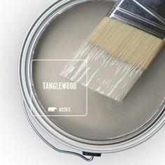 Behr Paint Colors, Room Paint Colors, Interior Paint Colors, Paint Colors For Home, House Colors, Coral Paint Colors, Natural Paint Colors, Best Bedroom Colors, Trending Paint Colors
