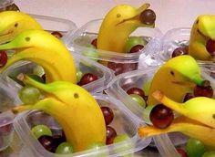 dolfin bananas